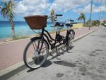 greenline-cruiser-tandem-ebike-kit.jpg