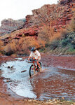 bicycle-court-young-4.jpg