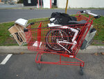 Ready to go into the supermarket_modifié-1.jpg