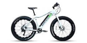 Surface 604 Boar E350 Electric Bike Review 1
