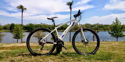 Easy Motion Neo 29er
