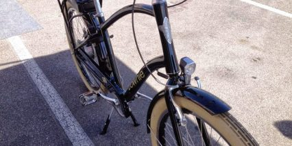 Electra Townie Go 2014 Fenders