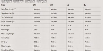 Raleigh Misceo Ie Size Guide