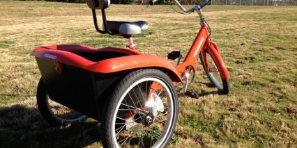 Rear Wheels Pedego Trike
