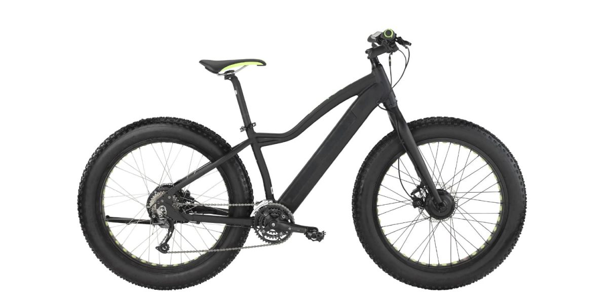 Easy Motion Big Bud Pro Electric Bike Review