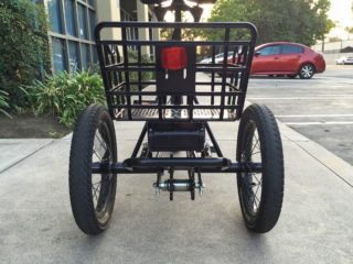 Liberty Trike Electric Tricycle Review Electric Bike