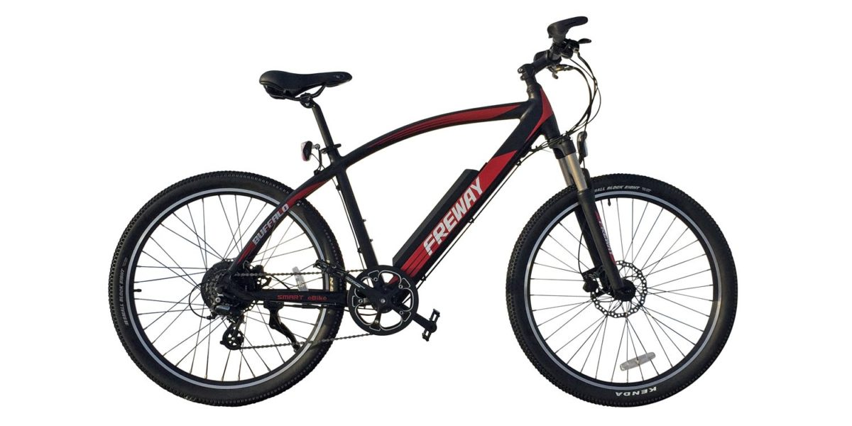 Freway Buffalo Electric Bike Review