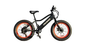 Pedego 20 Trail Tracker Electric Bike Review