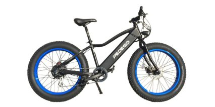 Pedego 24 Trail Tracker Electric Bike Review