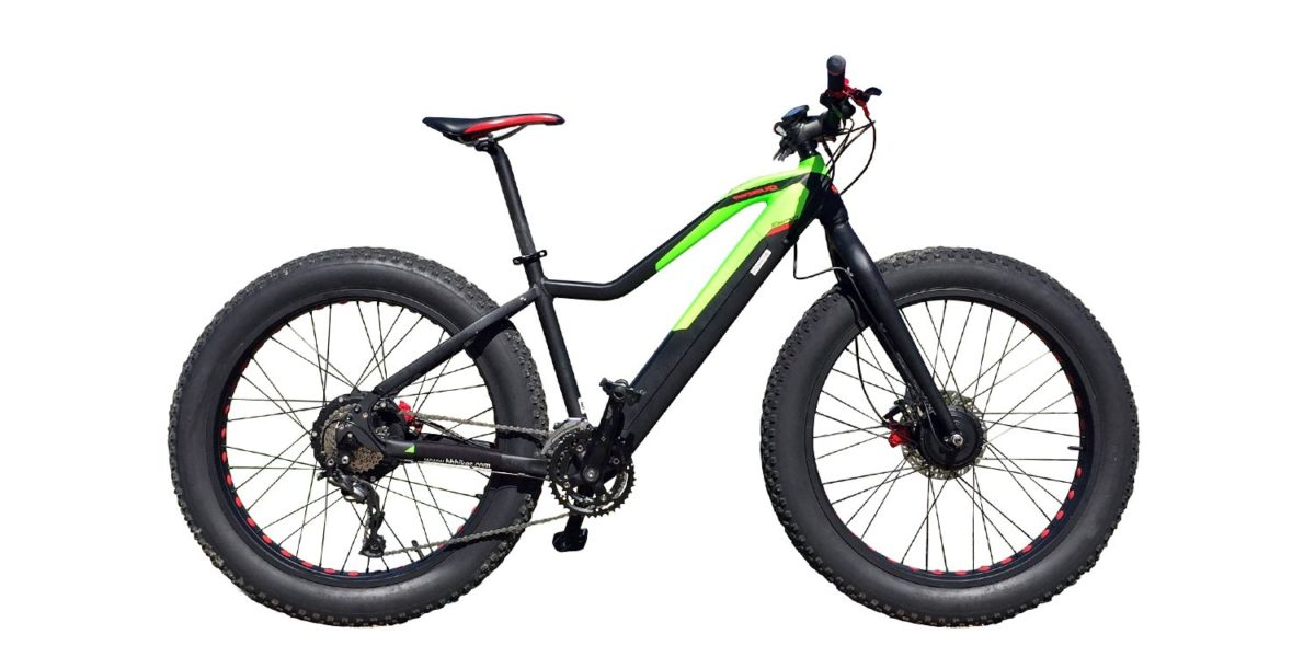 Easy Motion Evo Big Bud Pro Electric Bike Review