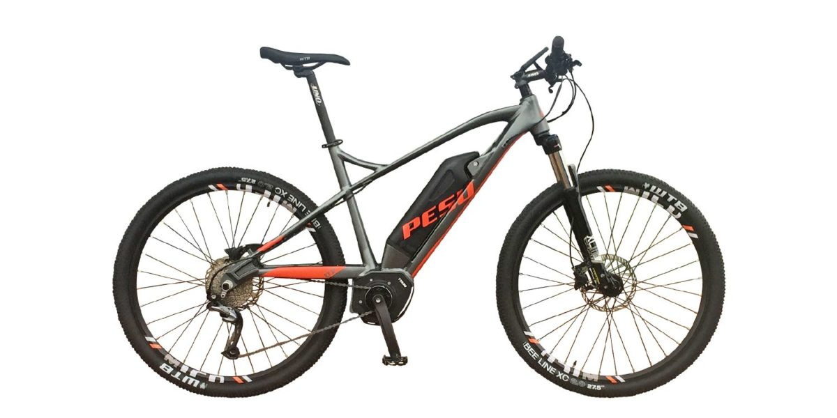 Pesu Monster 250w Electric Bike Review