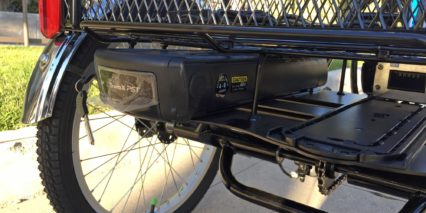 Raleigh Tristar Ie Rack Mounted 48 Volt Removable Battery Pack