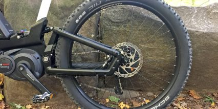 Riese Muller Delite Mountain Rear Suspension Swing Arm Schwalbe Nobby Nic Tires
