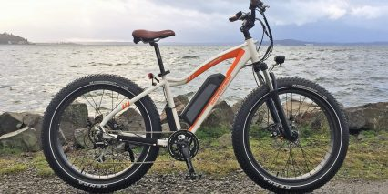 2019 Rad Power Bikes Radrover.jpg