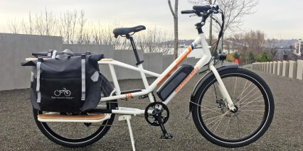 2019 Rad Power Bikes Radwagon