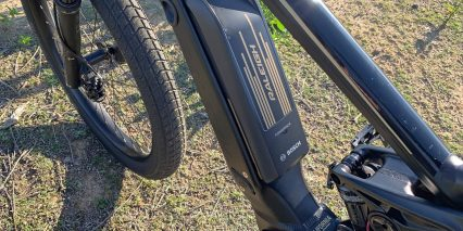 Raleigh Lore Ds Ie Bosch Powerpack 500