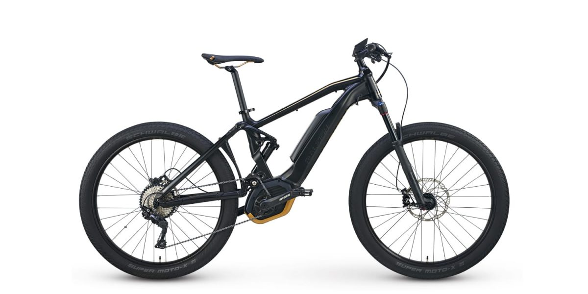 Raleigh Lore Ds Ie Electric Bike Review