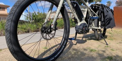 Surly Big Easy Rigid Front Fork With Bosses Angle View