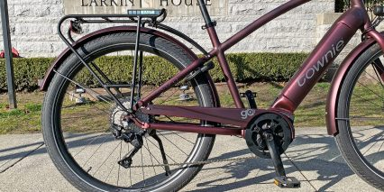 Electra Townie Path Go 10d Eq Paint Matched Alloy Fenders And Steel Chain Cover